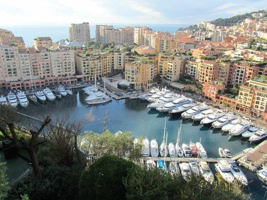 Ambassador-Monaco